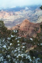 Grand Canyon- One of God's Wonders